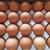 野上養鶏場 - 料理写真:20個整列