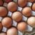 野上養鶏場 - 料理写真:卵の表情
