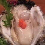 13335024 - 天然岩牡蠣