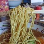 食事処たかはし - 麺アップ
