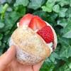 ザ リトル ベーカリー トーキョー - 料理写真:苺あんバターボール