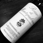 イタリアワインと豚肉バル BUTA MA MILLE - 現行ヴィンテージが2005年という謎のロッソディモンテプルチアーノ。