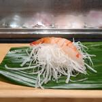 すし処 會 - 料理写真:ボタン海老