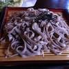 北野天満温泉 - 料理写真:天ざるそば(天神そば)
