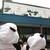 上野動物園 バードソング - 東京旅行2日目も、朝から上野動物園に来たボキら。正門右側にこんな看板が出てたよ。ちびつぬ「シャンちゃんの看板なの~♪」