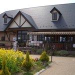 1338876 - 菜の花畑とレストラン