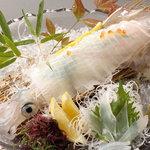 おおいり - 料理写真:「イカの活造り」3月下旬~11月下旬(海がしけてるとは入りません)