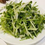 133988052 - 香菜と青唐辛子のサラダ