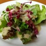 ヴィーノヴィーノ - ランチのサラダ