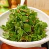 Ippou - 料理写真:クレソン蕎麦大盛