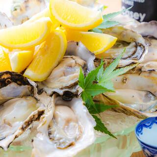 6月7月は『生牡蠣食べ放題フェア』やります♪