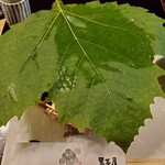 134216571 - プラタナスの葉っぱ
