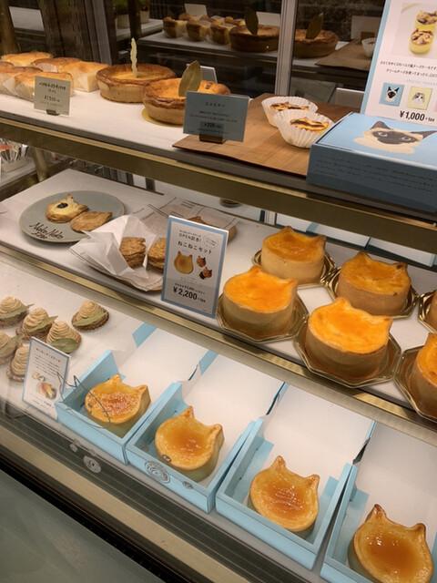 チーズ ケーキ ねこねこ