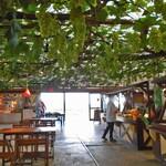 フルーツ童夢やまだ農園 - 葡萄棚の下のフリーのテーブル席