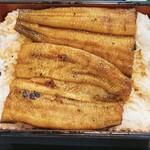 橋本食堂 - 鰻の照りが良いですね。