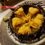 Akasakasushifuruyama - 殻付き雲丹 (北海道産キタムラサキウニ)