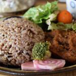 お野菜小皿料理のワインバル KiboKo - メインはベジタブルハンバーグ