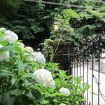 鎌倉みよし - 2012,6,15 明月院にて