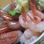 栄福鮨 - 漁師町の甘海老丼!心もお腹も満足でしたっ!