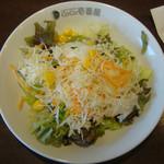 カレーハウス CoCo壱番屋 - 野菜サラダ