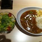 tent cafe - 店主の気まぐれテントカレー(肉団子)のセット(サラダ、ドリンク付)