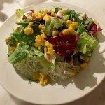135302067 - 新緑野菜のグリーンサラダ