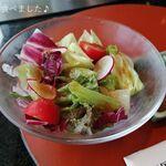 135496158 - 彩り豊かなサラダ♪