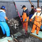 驛の食卓 - 生産者訪問は時には海の上にまで!!大磯漁協の組合長さまいつもありがとうございます!