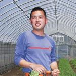 驛の食卓 - 藤澤で14代続く農家「山澤農園」さん。私達に作り手の思いを教えてくれた一人です。生産者の皆さんが野菜やお肉を作る思いと、私達がビールを造る思いはひとつ。だからこそ私達は毎日生産者の元へ向かいます。