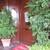 サイラー - 外観写真:カフェ入口