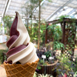 山中湖花の都公園フローラルドームふらら - ソフトクリームバニラ&ブルーベリー
