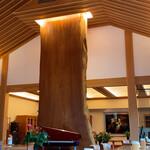 アドリア北出丸カフェ - 大ケヤキの柱
