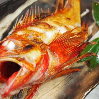 仲卸しが選び抜いた魚!魚で季節を堪能できる!