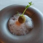 SUD restaurant - オリーブのコロッケ