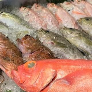 魚屋が仕入れる鮮度抜群の旬の魚!