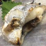 季節料理 藤 - 横須賀沖の一本釣りのドラゴンサイズのお腹