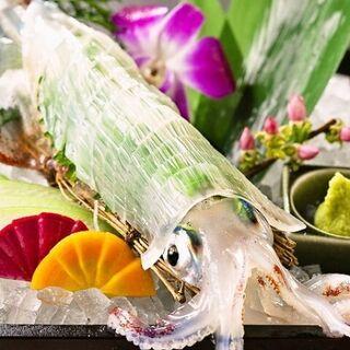 【生け簀】鮮度抜群の活イカを食べるなら