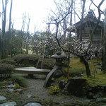 1365627 - お庭の風景