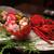 熊野倶楽部 - 料理写真:伊勢海老の炙りと旬魚の御造里