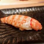 鮨 とかみ - 車海老