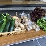 焼鳥今井 - 山梨のワイナリーから届く無農薬無肥料の野菜たち