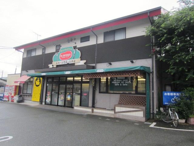 岩永源蔵本店