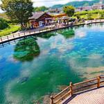 136908941 - 丸目池湧水