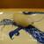 鮨旬美西川 - 料理写真:新烏賊、プリッとした歯応え