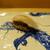 鮨旬美西川 - 料理写真:鰆、藁でいぶし焼きした香りが良い