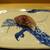 鮨旬美西川 - 料理写真:三重の真鯵