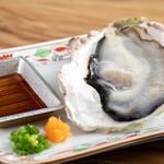 日本海 - 隠岐の岩ガキ