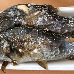 清流の里 - 岩魚(上)とニジマス(下)