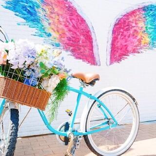 SNSで世界中に話題となった天使の羽