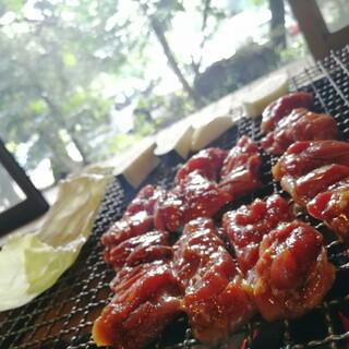 らくだ山 地鶏の店 - 料理写真: